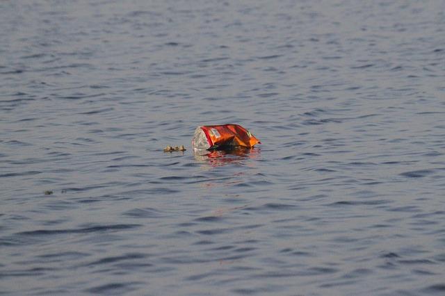 Экологические проблемы тихого океана 7 класс