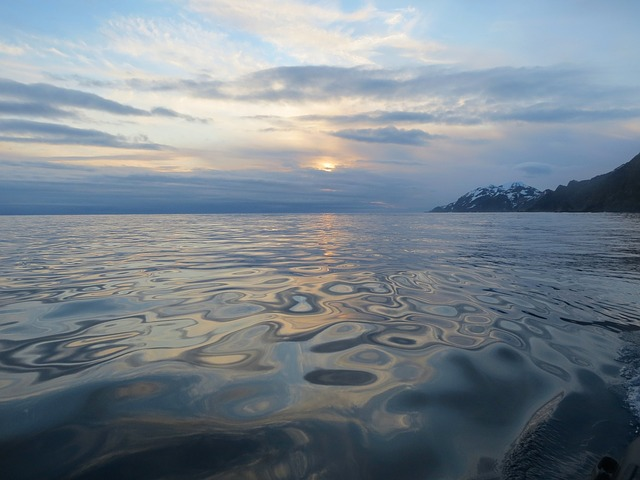 Какое море является частью тихого океана